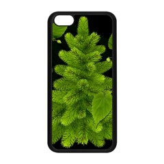 Decoration Green Black Background Apple Iphone 5c Seamless Case (black) by Sapixe