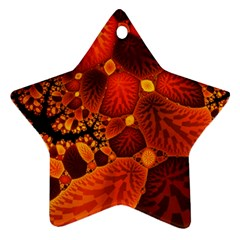Leaf Autumn Nature Background Star Ornament (two Sides) by Sapixe