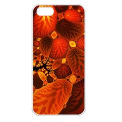 Leaf Autumn Nature Background Apple Iphone 5 Seamless Case (white) by Sapixe