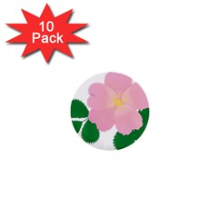 Rose Flower Briar Pink Flowers 1  Mini Buttons (10 Pack)