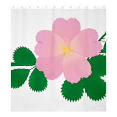 Rose Flower Briar Pink Flowers Shower Curtain 66  X 72  (large)