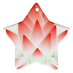 Lotus Flower Blossom Abstract Ornament (star) by Sapixe