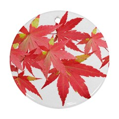 Leaves Maple Branch Autumn Fall Round Ornament (two Sides) by Sapixe