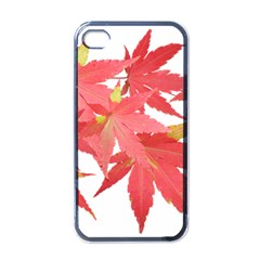 Leaves Maple Branch Autumn Fall Apple Iphone 4 Case (black) by Sapixe