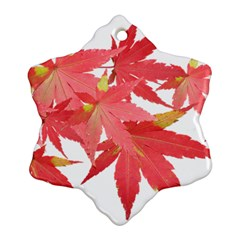 Leaves Maple Branch Autumn Fall Snowflake Ornament (two Sides) by Sapixe