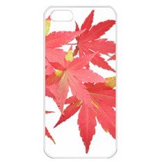 Leaves Maple Branch Autumn Fall Apple Iphone 5 Seamless Case (white)