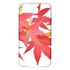 Leaves Maple Branch Autumn Fall Samsung Galaxy S5 Back Case (white) by Sapixe