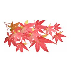 Leaves Maple Branch Autumn Fall Satin Wrap by Sapixe