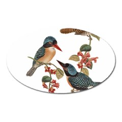 Bird Birds Branch Flowers Vintage Oval Magnet by Sapixe