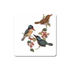 Bird Birds Branch Flowers Vintage Square Magnet by Sapixe