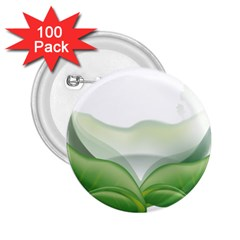 Pearl Drop Flower Plant 2 25  Buttons (100 Pack)
