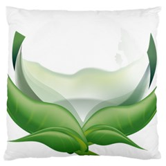 Pearl Drop Flower Plant Large Flano Cushion Case (two Sides) by Sapixe