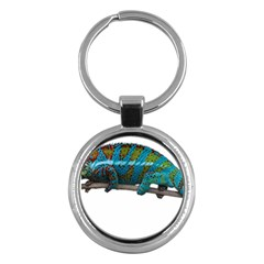 Reptile Lizard Animal Isolated Key Chains (round)  by Sapixe