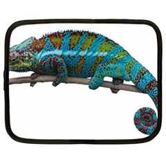 Reptile Lizard Animal Isolated Netbook Case (large) by Sapixe
