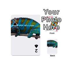 Reptile Lizard Animal Isolated Playing Cards 54 (mini)  by Sapixe