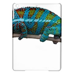 Reptile Lizard Animal Isolated Ipad Air Hardshell Cases by Sapixe