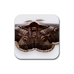 Night Butterfly Butterfly Giant Rubber Coaster (square)  by Sapixe