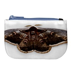 Night Butterfly Butterfly Giant Large Coin Purse