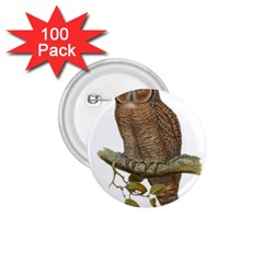 Bird Owl Animal Vintage Isolated 1 75  Buttons (100 Pack)