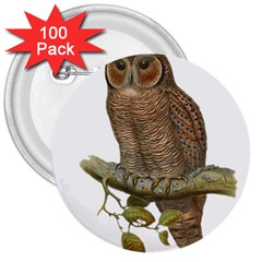 Bird Owl Animal Vintage Isolated 3  Buttons (100 Pack)