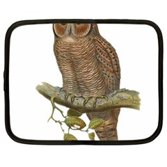 Bird Owl Animal Vintage Isolated Netbook Case (large) by Sapixe