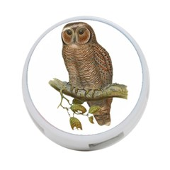 Bird Owl Animal Vintage Isolated 4 Port Usb Hub (one Side) by Sapixe