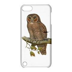 Bird Owl Animal Vintage Isolated Apple Ipod Touch 5 Hardshell Case With Stand by Sapixe