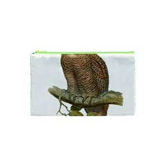 Bird Owl Animal Vintage Isolated Cosmetic Bag (xs) by Sapixe