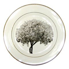 Nature Tree Blossom Bloom Cherry Porcelain Plates by Sapixe