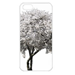 Nature Tree Blossom Bloom Cherry Apple Iphone 5 Seamless Case (white) by Sapixe