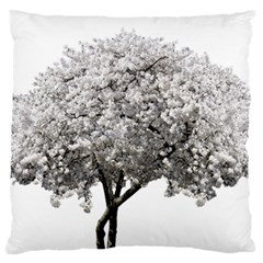 Nature Tree Blossom Bloom Cherry Large Flano Cushion Case (two Sides) by Sapixe