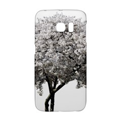 Nature Tree Blossom Bloom Cherry Galaxy S6 Edge by Sapixe