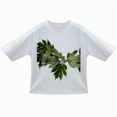 Leaves Plant Branch Nature Foliage Infant/toddler T Shirts
