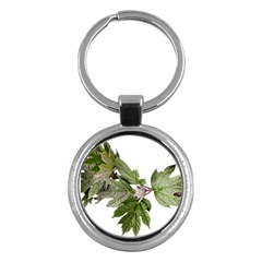Leaves Plant Branch Nature Foliage Key Chains (round)  by Sapixe