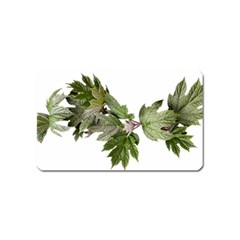 Leaves Plant Branch Nature Foliage Magnet (name Card) by Sapixe