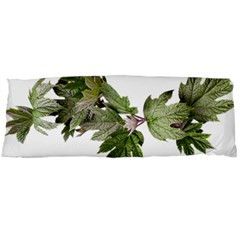 Leaves Plant Branch Nature Foliage Body Pillow Case (dakimakura) by Sapixe