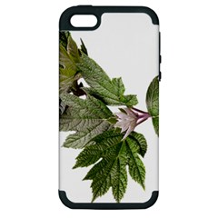 Leaves Plant Branch Nature Foliage Apple Iphone 5 Hardshell Case (pc+silicone) by Sapixe