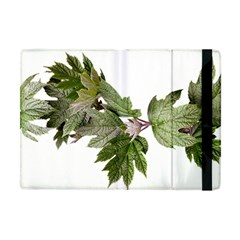 Leaves Plant Branch Nature Foliage Apple Ipad Mini Flip Case by Sapixe