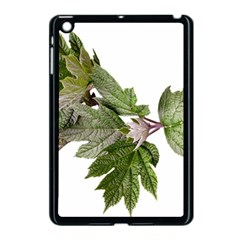 Leaves Plant Branch Nature Foliage Apple Ipad Mini Case (black) by Sapixe