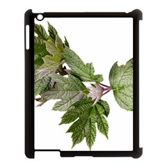 Leaves Plant Branch Nature Foliage Apple Ipad 3/4 Case (black) by Sapixe