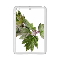 Leaves Plant Branch Nature Foliage Ipad Mini 2 Enamel Coated Cases by Sapixe