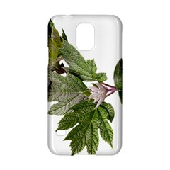 Leaves Plant Branch Nature Foliage Samsung Galaxy S5 Hardshell Case  by Sapixe