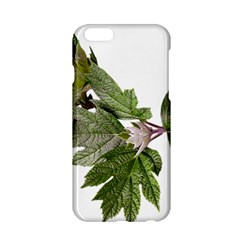 Leaves Plant Branch Nature Foliage Apple Iphone 6/6s Hardshell Case by Sapixe