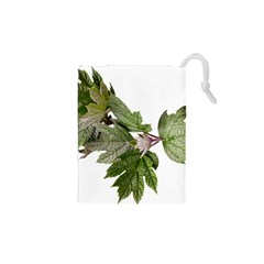 Leaves Plant Branch Nature Foliage Drawstring Pouches (xs)  by Sapixe