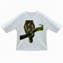 Owl Bird Infant/toddler T Shirts