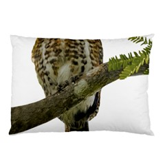 Owl Bird Pillow Case