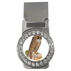 Bird Owl Animal Vintage Isolated Money Clips (cz)  by Sapixe