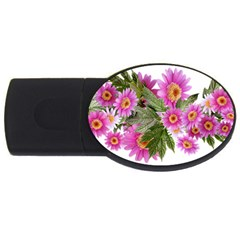 Daisies Flowers Arrangement Summer Usb Flash Drive Oval (2 Gb)