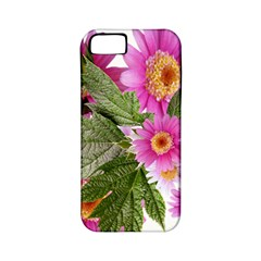 Daisies Flowers Arrangement Summer Apple Iphone 5 Classic Hardshell Case (pc+silicone) by Sapixe