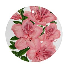 Flower Plant Blossom Bloom Vintage Ornament (round)